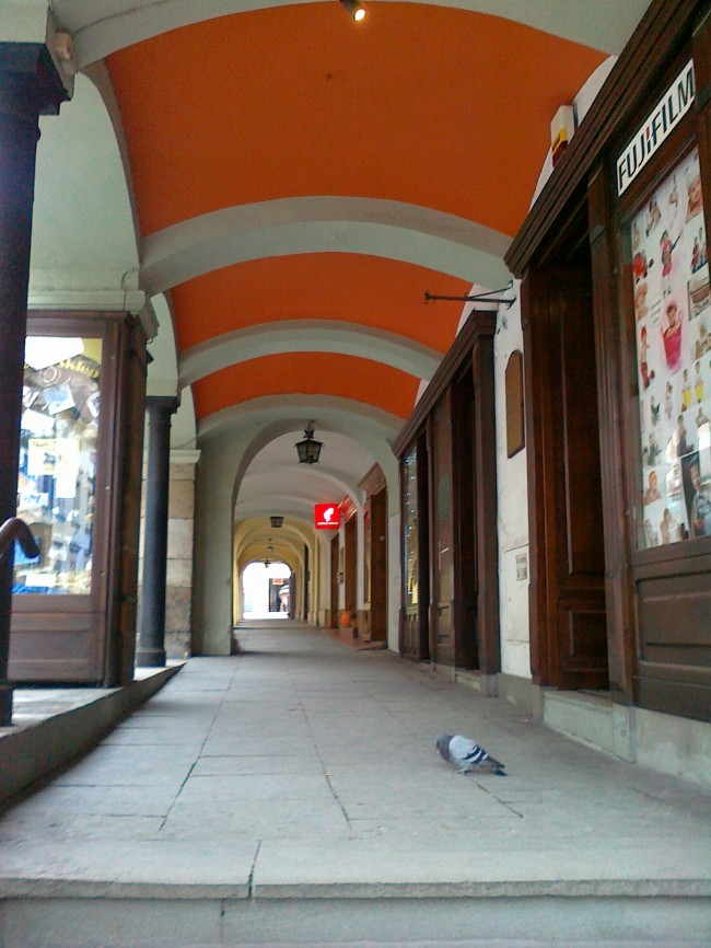 szukam przyjaciela portal Gliwice